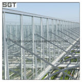 4mm 5mm Super White/Ultra Clear Tempered Glass per Greenhouse