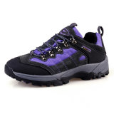 Sport Colorful Mountain Hiking Outdoor Shoes für Women (AK8883)