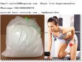 Arrêter le muscle gaspillant le citrate de Clomiphene de stéroïde anabolique Clomid