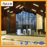 Modelos comerciais do edifício residencial dos modelos do edifício/modelos da exposição/modelos do apartamento e da casa de campo/modelo arquitectónico/modelo feito sob encomenda