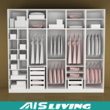 Hauptmöbel-Weg im Garderoben-Wandschrank (AIS-W010)