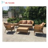 H il sofà moderno esterno del rattan di svago della mobilia di Foshan ha impostato 2016