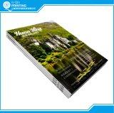 Niedrige Kosten-Papiereinband-Zeitschriften-Großhandelsdrucken