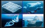 Rectángulos plásticos/envase de los vehículos que hace la máquina
