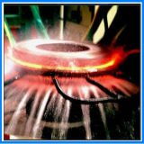 Four de bonne qualité de traitement thermique de fréquence de Superaudion (JLC-160)