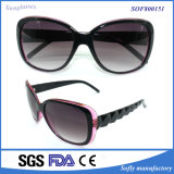 Female를 위한 Oversized 우아한 가득 차있는 Rim Frame Cat Eye Fashion Oval Sunglasses 또는 Eyewear