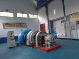 Gerador pequeno das energias hidráulicas da turbina de Francis