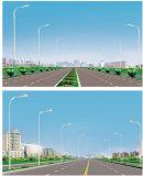 Straßenlaterne10m-LED mit dem einzelnen Arm