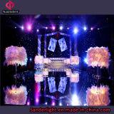 Горячей используемый выставкой занавес СИД Starlit для Wedding с голубым и белым светильником
