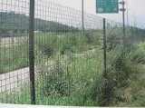 Новая загородка звена цепи PVC конструкции 2016