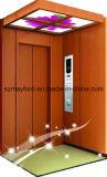 Роскошный домашний лифт с безволосое нержавеющим