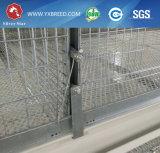 Una jaula de pájaro más barata de las aves de corral de la alta calidad del precio para la granja de pollo grande