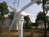générateur de turbine approuvé de vent de la CE 600W petit (100W-20KW)