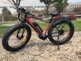 Visita delle bici grasse spinte elettriche della bici E con l'elemento portante posteriore