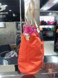 Nylon do desenhador de moda da fábrica com o saco de mão/venda por atacado de couro de China (BS12503)