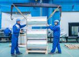 Película de poliester metalizada usando para el empaquetado flexible