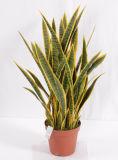 Planta de Yucca artificial de Bonsai Artificial de Alta Imitación con Ifr