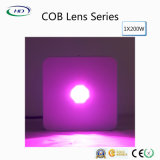 Hoge Power 1*200W COB Lens LED Grow Light voor Commercial Cultivation