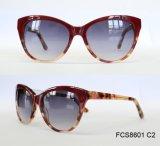 Верхняя новая повелительница Ацетат Солнечные очки цвета хорошего качества свежая