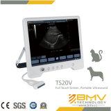 (Dierenarts Touchscan20) Draagbare Veterinaire Ultrasone klank voor PaardenDiagnose