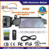 630W CMH 두 배 끝난 전자 밸러스트 및 LED는 Ligjht를 증가한다