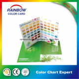 Folheto do cartão de cor de papel de parede personalizado com estilo novo