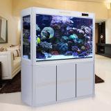 Kundenspezifisches riesiges Acrylfisch-Becken