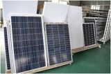 Modulo policristallino 250W della cellula solare al silicio con il rendimento elevato di buona qualità per fissare il prezzo del rapporto