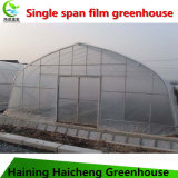 Пластичная зеленая дом высоким парником тоннеля