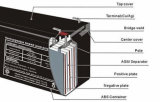 Batteria al piombo per l'UPS (12V-7Ah)