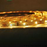 Indicatore luminoso di striscia del migliore venditore SMD 3014 LED