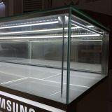 카운터와 보석 전시 LED 엄밀한 LED 지구