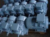Электрический двигатель серии Y2 трехфазный (Frame63-355L)