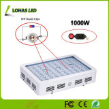 La planta llena hidropónica del espectro LED crece 300W ligero 450W 600W 800W 900W 1000W 1200W crece la lámpara