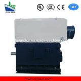 6kv/10kvyks het lucht-Water die van de reeks driefasenAC Motor Met hoog voltage yks5003-10-250kw koelen