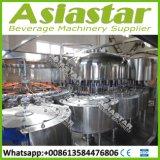Linha de produção automática da bebida da máquina de enchimento da água bebendo