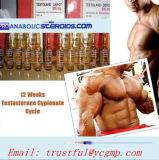 Nandrolone Decanoate/Deca Durabolin CAS di alta qualità: costruzione del muscolo 360-70-3for