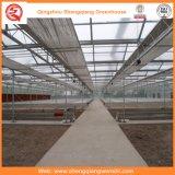 野菜または花のためのガラス温室の耕作