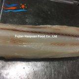 海によってフリーズされるヨシキリザメの肉付けの作成