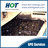 Goldreduktion-Pflanzengoldschwimmaufbereitung