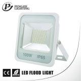 세륨 RoHS SAA를 가진 LED 정연한 투광램프를 판매하는 100W 상단