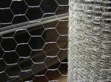 熱浸される六角形の金網の網を編んだ後電流を通されて