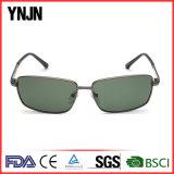 Hecho en China Ynjn hombres cuadrados gafas de sol polarizadas (YJ-F8105)