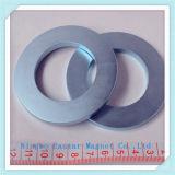 N38h Ring-Form NdFeB Magnet für Auotomobile Lautsprecher