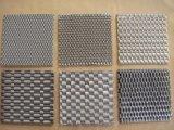 Rete metallica decorativa dell'acciaio inossidabile di Flexsible