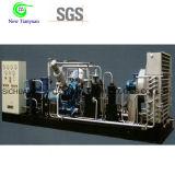 Compresor Patín-Montado comprimido del gas natural CNG para la estación estándar del reaprovisionamiento