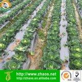 Pellicola nera di salto del pacciame del PE per agricoltura o orticoltura