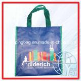 Sacos de compra tecidos PP (ENV-PVB054)