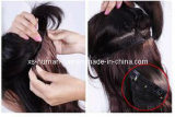 Grampo de 100% em Remy Human Hair Extension Factory Price