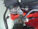 Rociador de la energía -Solo 423 motorizado nebulizador Solo Solo puerto 423 del motor del ventilador de la niebla pulverizador (AM-423)